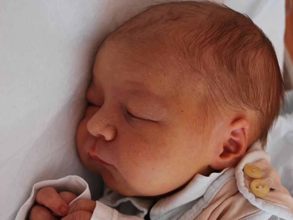 Dominick Jakubec, Přerov, narozen 19. srpna v Přerově, míra 49 cm, váha 3 450 g