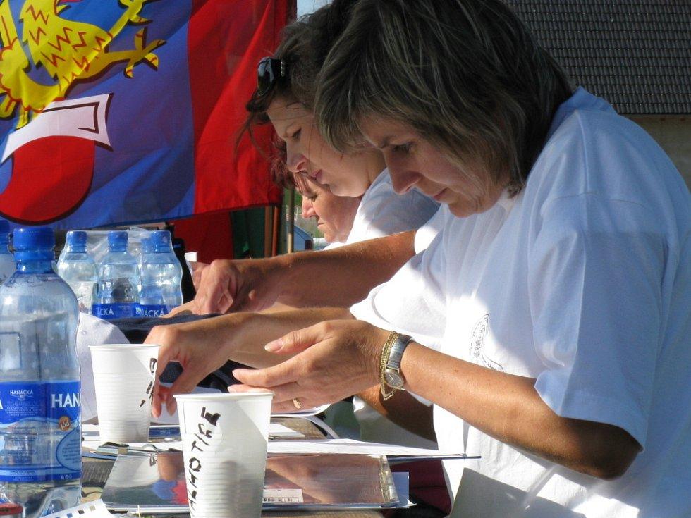 Celkem devět vesnic Mikroregionu Záhoran zápolilo na šestém ročníku Mikroregionální olympiády ve Všechovicích.
