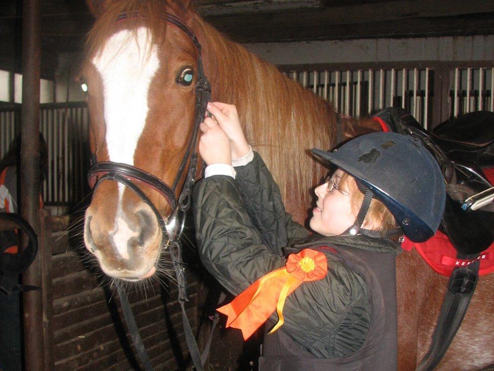 K ovládání je nutné koně nauzdit.
