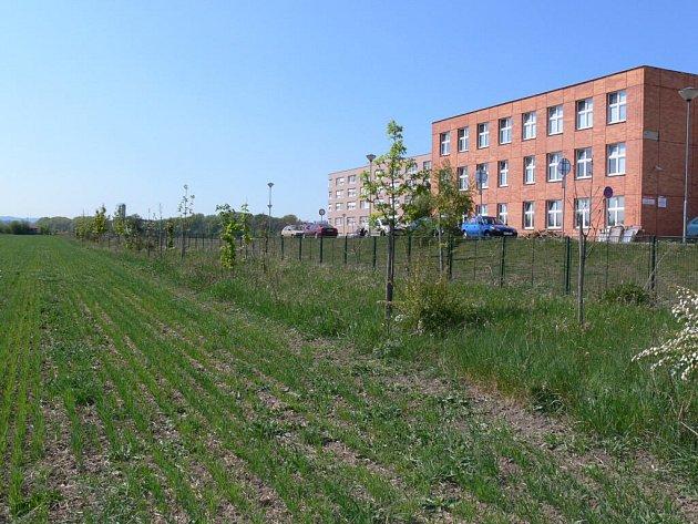 Vyroste na těchto pozemcích park, nebo se stanou předmětem spekulací realitních kanceláří?
