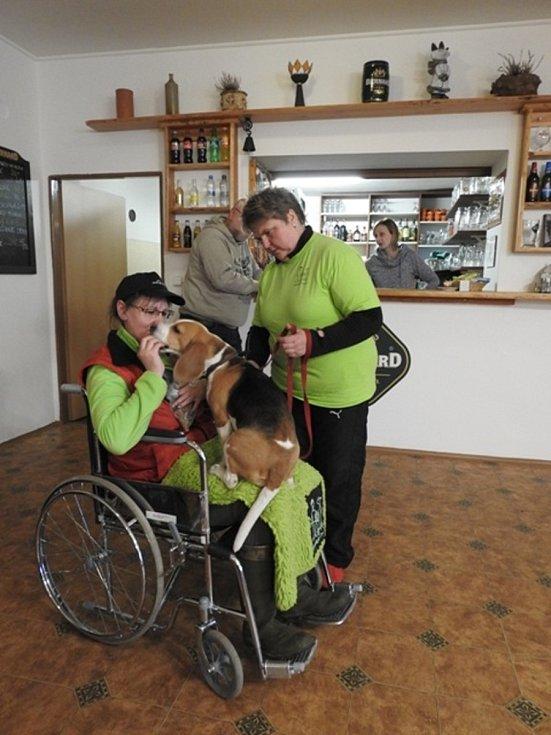 Jana Polášková je vychovatelka sluchově postižených dětí a chovatelka bíglů. Svou práci spojila se svým koníčkem a díky canisterapii pomáhá handicapovaným dětem.