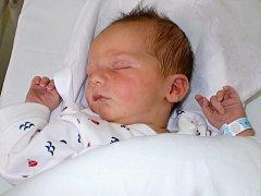 Martin Birke, Červený Kostelec, narozen dne 11. června 2015, míra: 52 cm, váha: 3438 g