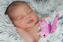 Dita Zatloukalová, Troubky, narozena dne 15. listopadu 2014 v Přerově, míra: 48 cm, váha: 3290 g