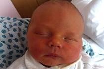 Matyáš Pistovčák, Čechy, narozen dne 29. října 2013 v Přerově, míra: 47 cm, váha: 2800 g