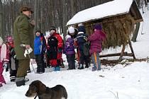 Děti z mateřinky na Struhlovsku v Hranicích krmily lesní zvěř