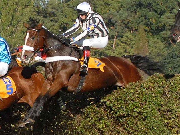 Podruhé a naposledy se Pavel Složil zúčastnil v neděli Velké pardubické s koněm Polárníkem.