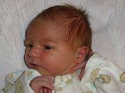 Sofie Mrtvá, Přerov-Žeravice, narozena dne 8. listopadu 2016 v Přerově, míra: 49 cm, váha: 3544 g