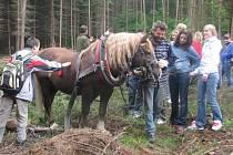Jedinečnou příležitost nahlédnout pod pokličku lesního hospodářství měli v úterý všichni, kdo se ve Valšovicích zúčastnili Dne lesa. Lesníci dětem názorně předvedli, jak se sadí a kácejí stromy a jak se vozí z lesa ven.