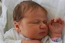 Sylvie Růžičková, Paršovice, narozena 26. září 2011 v Přerově, míra 49 cm, váha 3 550 g
