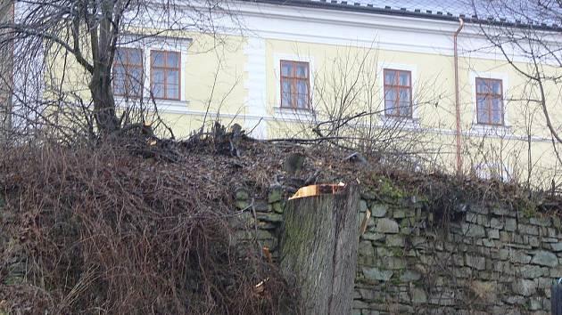 Město nechalo lípu pokácet, když jedna z větví neodolala náporu větru.