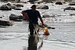 Rybáři v Hranicích sbírají uhynulé ryby po masivní otravě kyanidem v září 2020. Ilustrační foto