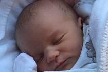 Pavlík Zábraha, Lipník nad Bečvou, narozen 30. ledna 2012 ve Zlíně, míra 51 cm, váha 3 250 g