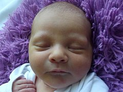 Evelinka Dočkalová, Troubky, narozena dne 4. března 2015 v Přerově, míra: 47 cm, váha: 2776 g