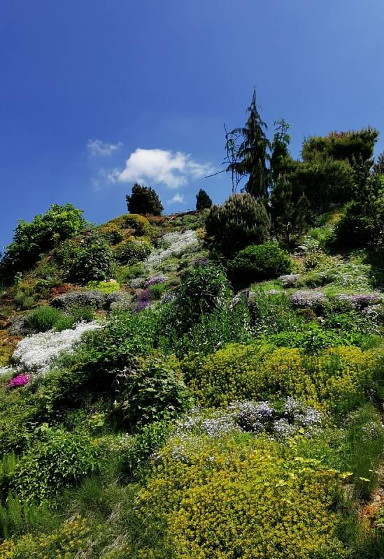 Arboretum Makču Pikču