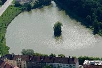 Kvákání žab ruší každoročně od května do srpna obyvatele ulic Jaselská a Jiřího z Poděbrad.