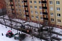 Celkem sedm stromů bylo ve čtvrtek 8. ledna pokáceno na hranickém sídlišti Hromůvka