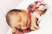 Dominika Dubová, Hranice, narozena 5. srpna 2019 v Přerově, míra 49 cm, váha 3370 g