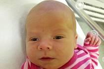 Klárka Telaříková, Přerov, narozena dne 23. listopadu 2014 v Přerově, míra: 52 cm, váha: 4190 g