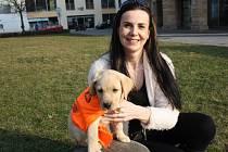 Kateřina Macháčková vychovává budoucí asistenční psy.