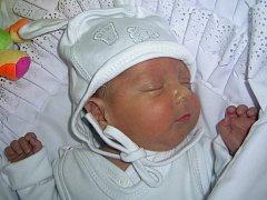 Samuelek Neplech, Štarnov, narozen 5.února 2012 v Přerově, míra 37 cm, váha 1 200 g (po propuštění z FN Olomouc má nyní míru 47 cm, váhu 2570 g)