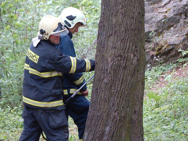 Hasiči se k místu s hasičskou technikou nedostali, vodu k hašení zde proto museli dopravit v nádobách.