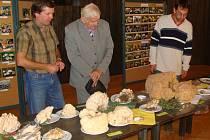 Předseda Mykologického klubu v Přerově Milan Plášek (na snímku vlevo) na výstavě hub v přerovském klubu Teplo.
