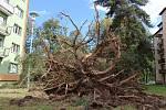 Vichřice napáchala škody na třídě 1. máje, kde spadl nedaleko obchodu Hruška vrostlý smrk. Na sídlišti Struhlovsko to odneslo hned stromů několik. Před domem číslo 1410 a 1411 nevydržely nárazy silného větru hned tři vzrostlé borovice a na dům s číslem 14
