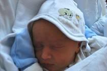 Andy Navrátil, Jezernice, narozen 20. listopadu 2011 v Přerově, míra 48 cm, váha 2 660 g