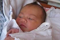 Eliška Trefilová, Drahotuše, narozená 20. listopadu 2011 v Novém Jičíně, míra 50 cm, váha 3530 g