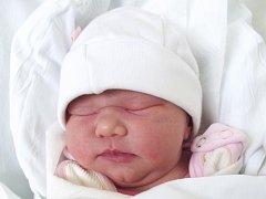 Michaela Zbránková, Přerov, narozena dne 20. ledna 2015 v Přerově, míra: 47 cm, váha: 3 110 g