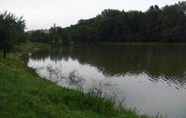 Rybník Kuchyňka