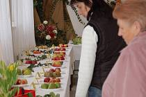 Výstava v Troubkách nabídla ukázku různých druhů ovoce a zeleniny, expozici sušených i živých květinových vazeb.