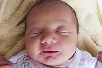 Lea Polidorová, Přerov, narozena dne 7. května 2015 v Přerově, míra: 46 cm, váha: 2454 g