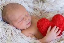 Lukáš Oleš, Lipník nad Bečvou, narozen dne 18. srpna 2015 v Přerov, míra: 45 cm, váha: 2308 g