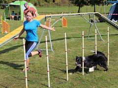 V druhém ročníku agility závodů s názvem Hranické hrátky se utkalo přes 70 soutěžících z celé republiky.