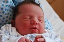 Amálie Svobodová, Přerov, narozena 24. srpna v Přerově, míra 52 cm, váha 3 920 g