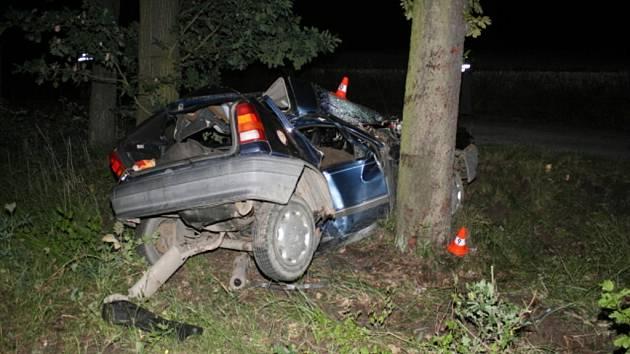 Při nehodě utrpěl řidič těžká zranění, jimž na místě podlehl.