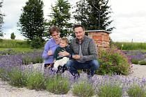 Lenka a Jiří Švarcovi si u svého domu v Kyžlířově na Potštátsku vypěstovali levandulový labyrint.
