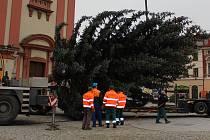 Příjezd vánočního stromu na hranické náměstí. Ilustrační foto