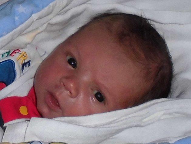 Miloslav Hynčica, Potštát, narozen dne 9. března 2015 v Olomouci, míra: 50 cm, váha: 3715 g