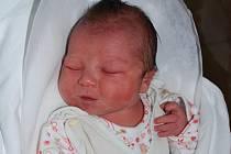 Anetka Slivečková, Přerov, narozena 25. února 2010 v Přerově, míra 52 cm, váha 3 720 g