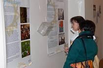 Výstava černobílých fotografií dětí z dětských domovů na hranickém zámku