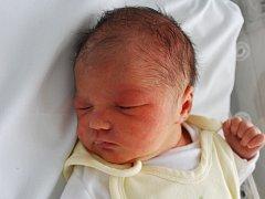 Nelinka Mižigárová, Přerov, narozena dne 3. října 2012 v Přerově, míra: 50 cm, váha: 3 570 g
