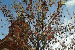 Velikonoční strom tzv. Kraslicovník letos na hranické náměstí