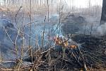 Rozsáhlý lesní požár v úterý  2. dubna na Potštátsku