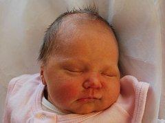 Barborka Černošková, Popovice, narozena dne 10. listopadu 2012 v Přerově, míra: 48 cm, váha: 3 080 g
