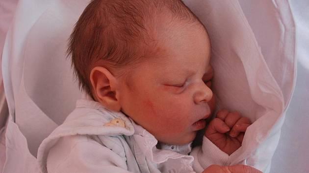 Laura Štěpaníková, Hradčany, narozena 2. ledna 2010 v Přerově, míra 50 cm, váha 3 000 g