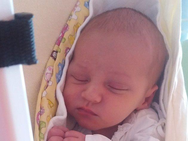Július Majerský, Bělotín, narozen dne 21. září 2016 ve Valašském Meziříčí, míra: 50 cm, váha: 3500 g