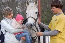 Na Střední škole zemědělské v Přerově si děti zajezdily na koních.