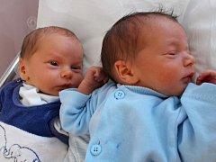 Daniel a Antonín Vaňkovi, Horní Moštěnice, narozeni dne 5. července 2015 v Přerově, míra oba: 46 cm, váha: Daniel 2276 g, Antonín 2520 g